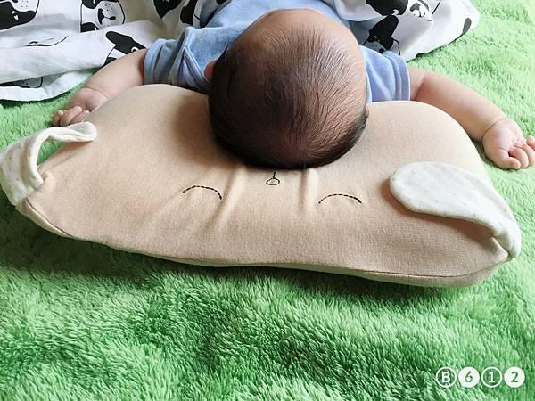機棉枕頭Cani-12.4.JPG