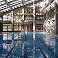 偌大的泳池,一整天常常只有寥寥可數的泳客光臨