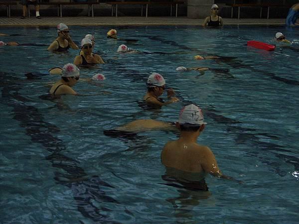 可別看這小小的泳池,可是薀孕出不少人才教練吶!