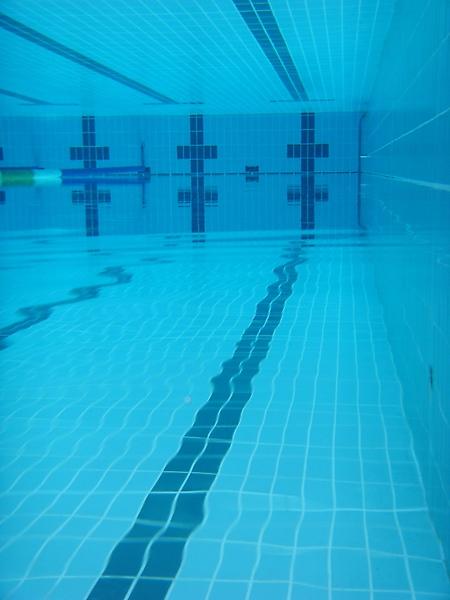 清中泳池的超棒水質呈現給大家!
