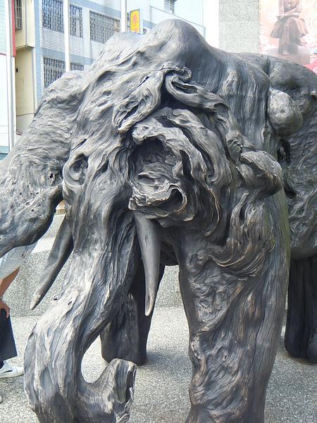猜得出來這是什麼嗎?大象!!