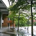 雨後的泳池外