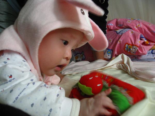 媽迷我可以吃草莓嗎