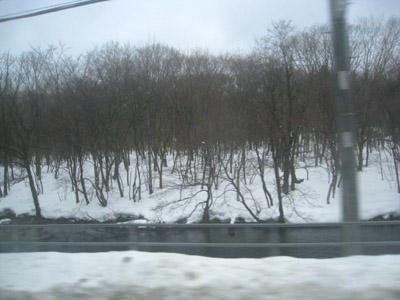 往第一個地點的路上,一開始就是雪啦~