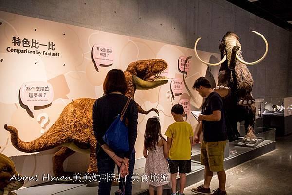 博物館-23.JPG