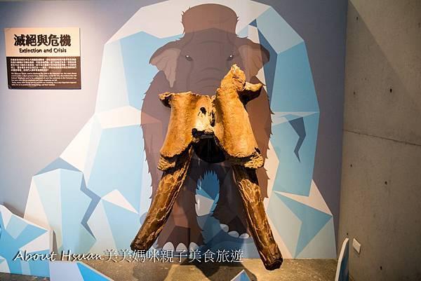 博物館-27.JPG