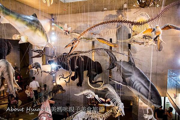 博物館-45.JPG