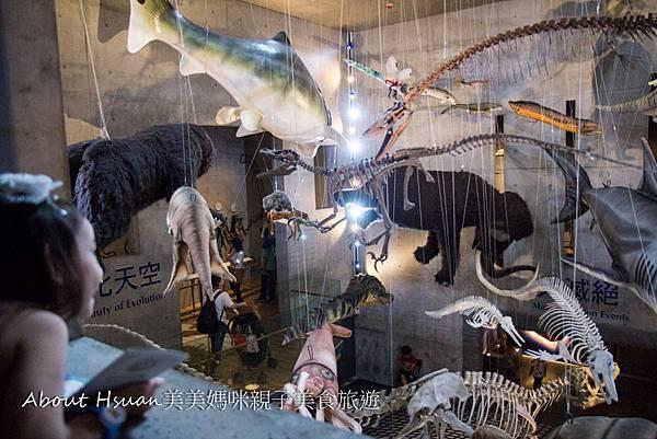 博物館-48.JPG