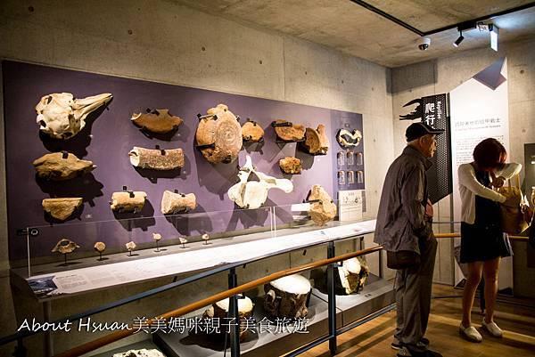 博物館-60.JPG