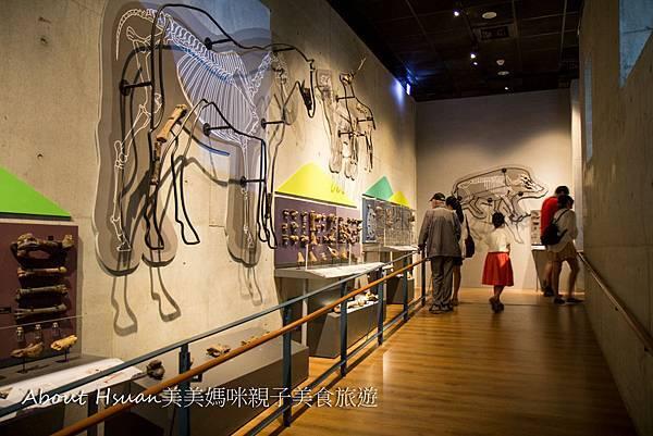博物館-62.JPG