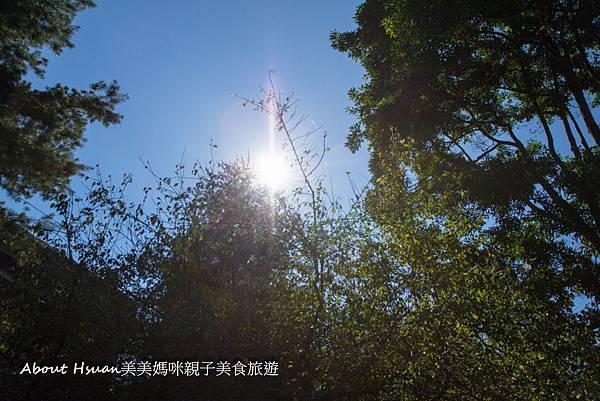 金台灣-56.JPG