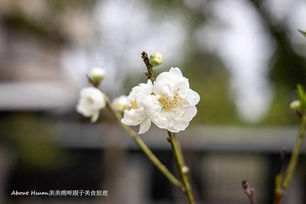 大溪勤奮公園-13.jpg