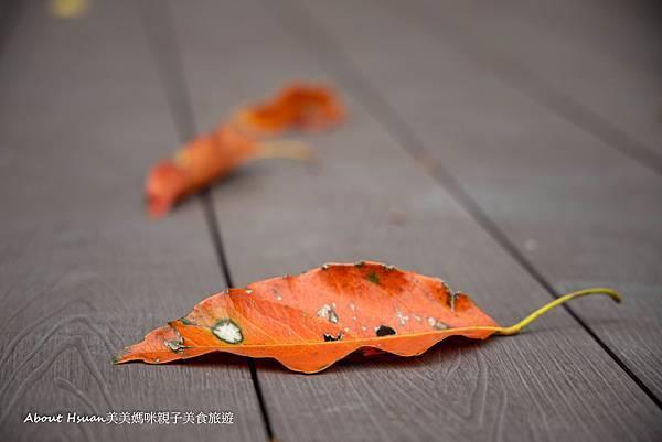 大溪勤奮公園-14.jpg