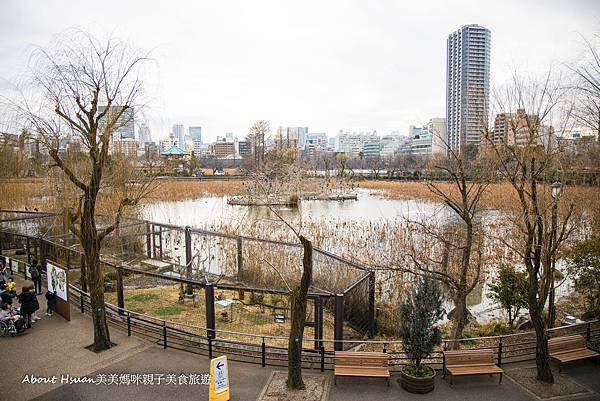 上野動物園-8.jpg