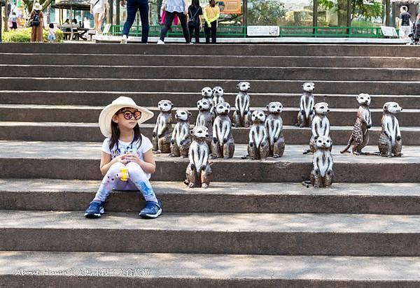 六福村動物區打卡-9.jpg