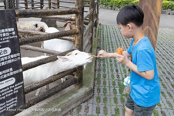 六福村動物區打卡-62.jpg