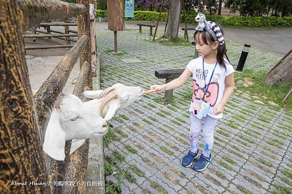 六福村動物區打卡-64.jpg