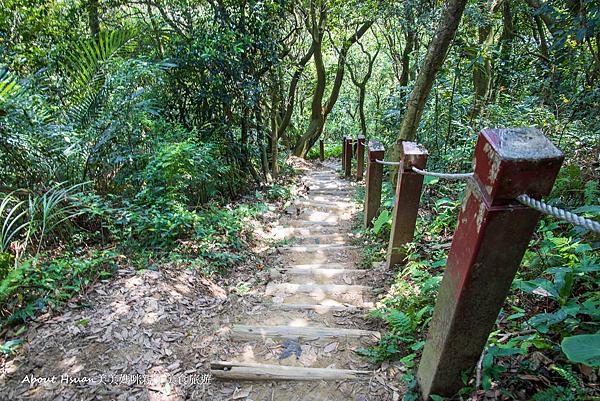 鳶山步道-45.png