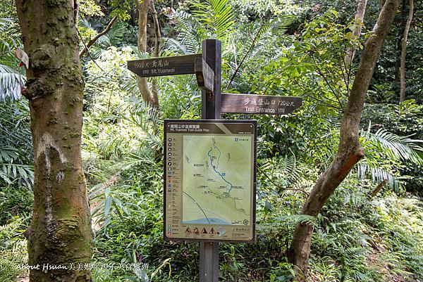鳶山步道-51.png