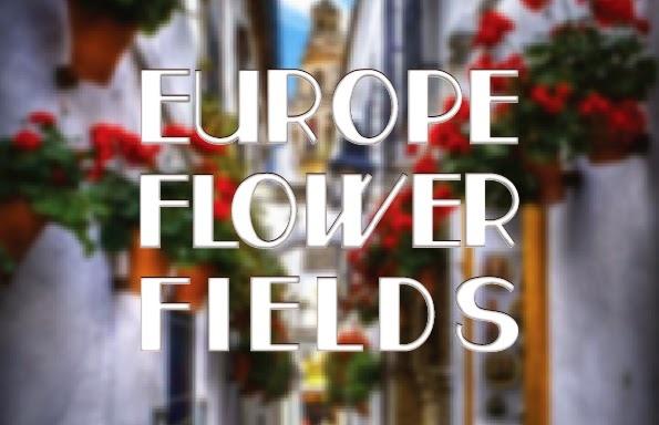 FlowerFields.jpg