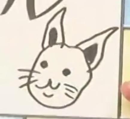 不懷好意的兔子
