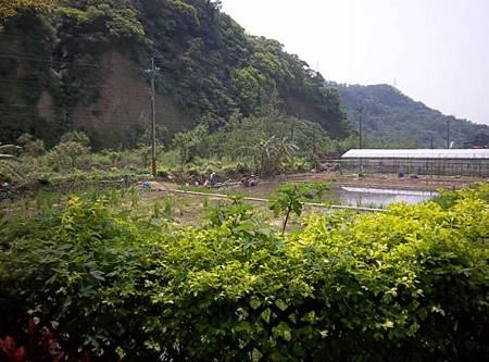 新竹6後花園