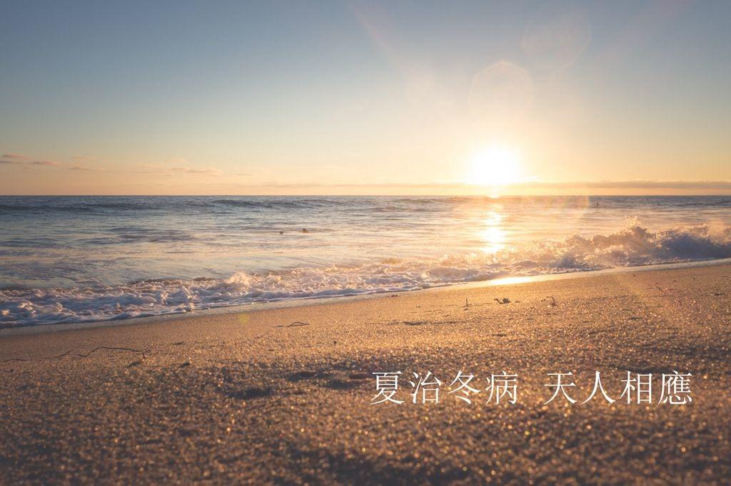 pexels-photo-29724_副本.jpg