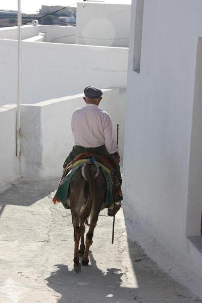 21騎驢老人.JPG