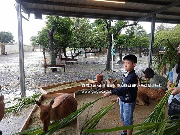 108.8.18香港黃太太6人墾丁1日包車1.jpg