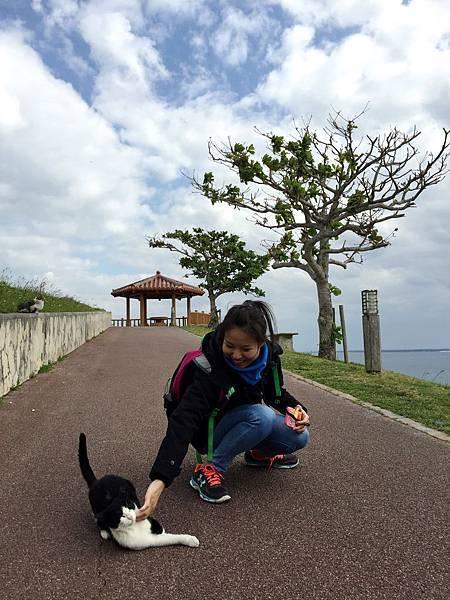 知念岬公園47