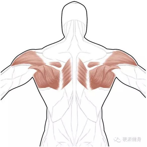 圓肩鍛鍊位置