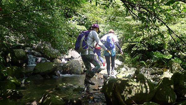 20160717 鹿角坑楓林瀑布野餐_4103