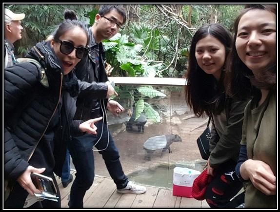 NY – Bronx Zoo.jpg