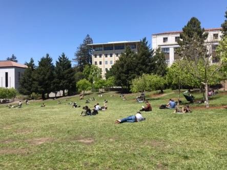 美國舊金山遊學EC - Gogoenglish