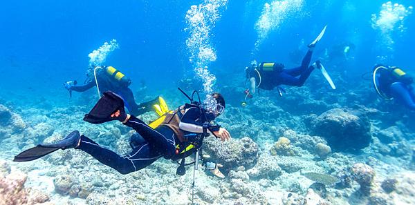 馬爾他‧美國‧澳洲【潛水課程】推薦 GogoEnglish遊學留學