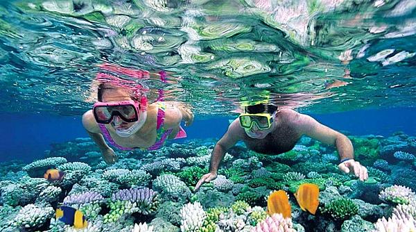馬爾他‧澳洲【潛水課程】推薦 GogoEnglish遊學留學