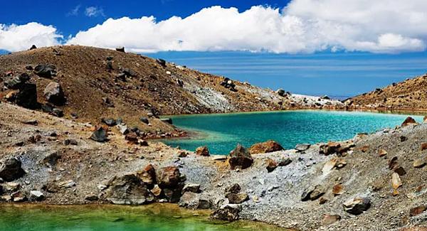 紐西蘭 奧克蘭 Worldwide【2019年1個月遊學方案】 gogoenglish