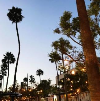 洛杉磯遊學-街景-GogoEnglish美國遊學