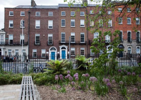 愛爾蘭都柏林遊學– 學習CP值超高,還有機會留在當地工作 gogoenglish學校
