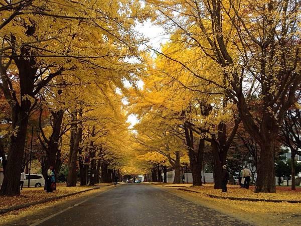 15.秋季