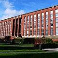 伯明罕大學