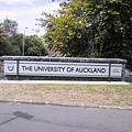 奧克蘭大學