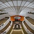 柏林自由大學