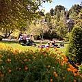 加州多明尼克大學