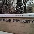 多明尼克大學