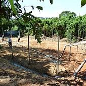 興建籃球場2