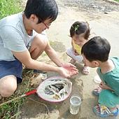 20120722抓大肚魚 (18)