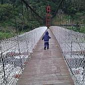 尖石吊橋5