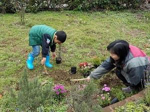 20150301種花植樹 (3).JPG