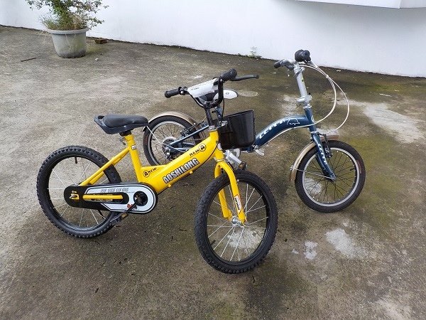 20160710騎腳踏車 (1).JPG